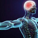 La neuromodulación percutánea ecoguiada, avance en fisioterapia invasiva